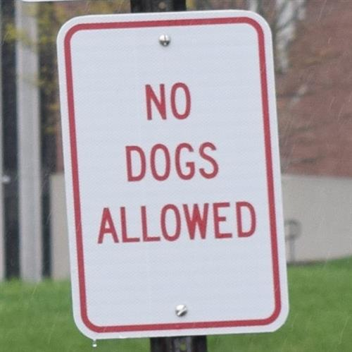 Photo of No Dogs Allowed Sign