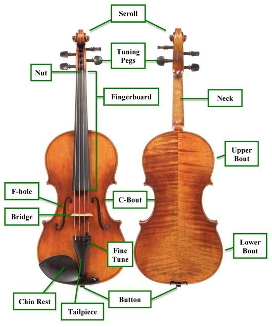 karbacka marie parts of the string instruments
